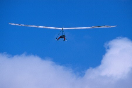 Rigid wing hang glider